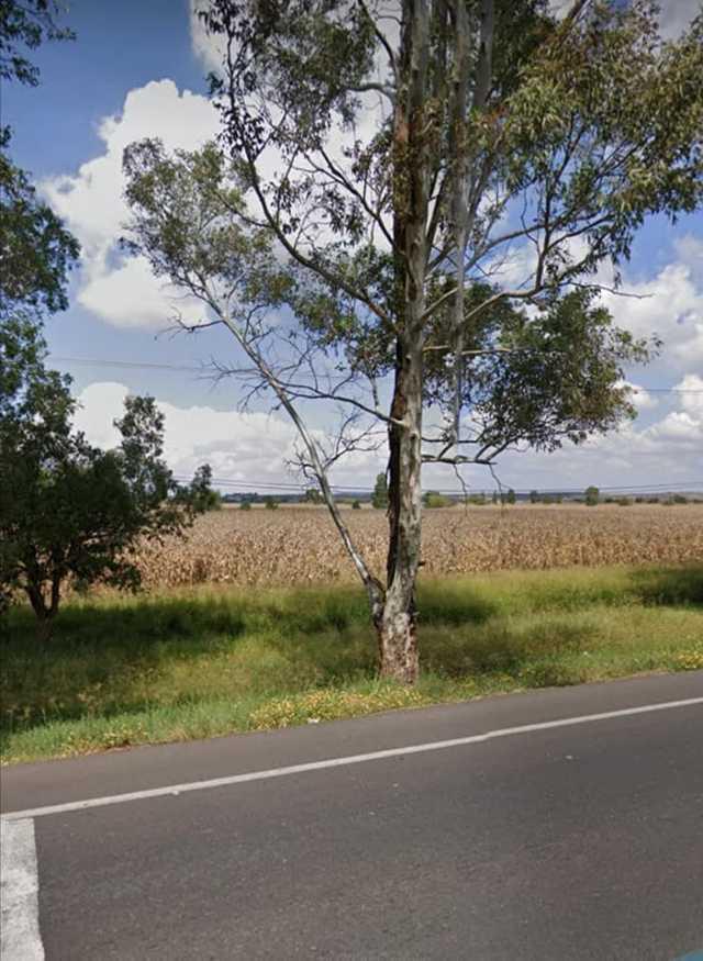 20 hectáreas en ÁLVARO OBREGON