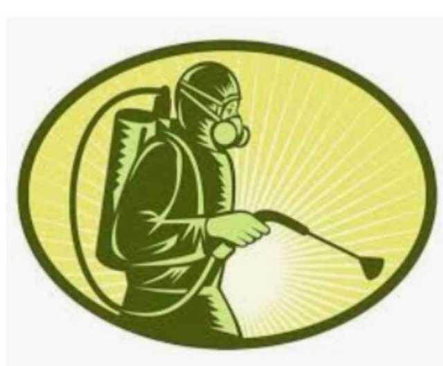 Fumigación contra cualquier plaga