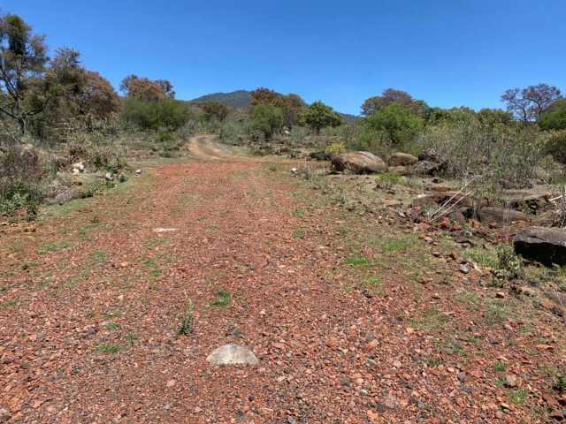 Terrenos en Desarrollo ENCINOS